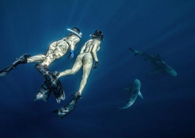 An image of two divers in the water with beautiful sharks off the coast of florida.